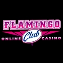 Flamingo Club Review