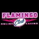 Flamingo Club Review